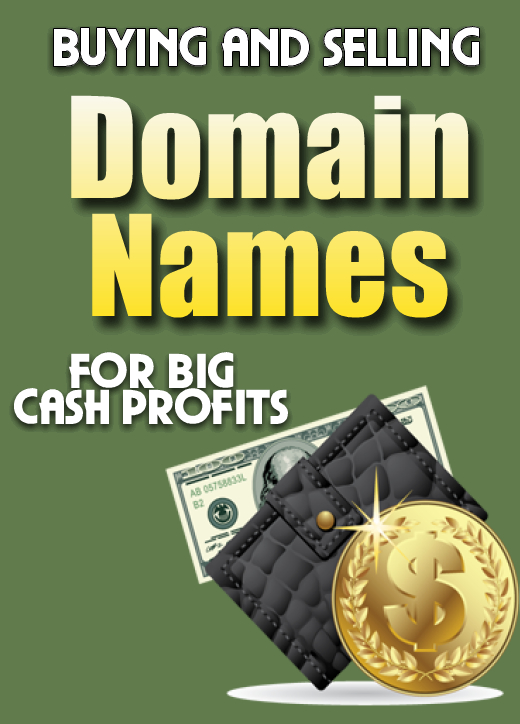 Buying and Selling Domain Names for Big Cash Profits with PLR